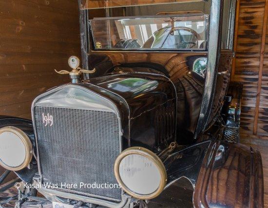Dixon, IL: Car in the garage