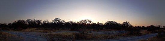Национальный парк Макгадикгади-Панз, Ботсвана: Lekhubu Island, Botswana