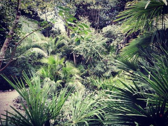 Parco Giardino dei Ligustri - Giardino Pittoresco