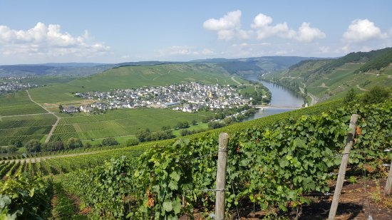 Leiwen, เยอรมนี: Ausblick auf Trittenheim