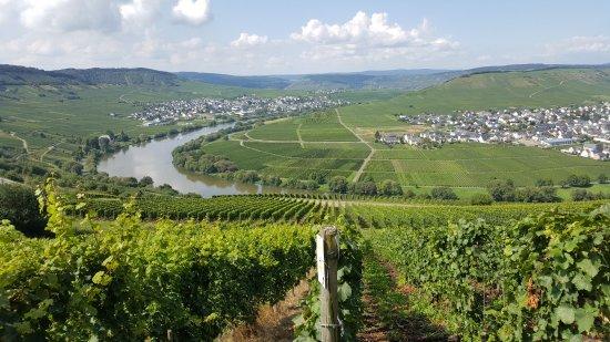 Leiwen, เยอรมนี: Der linke Teil der Moselschelschleife