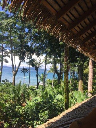 Copa de Arbol Beach and Rainforest Resort: Breakfast with a view