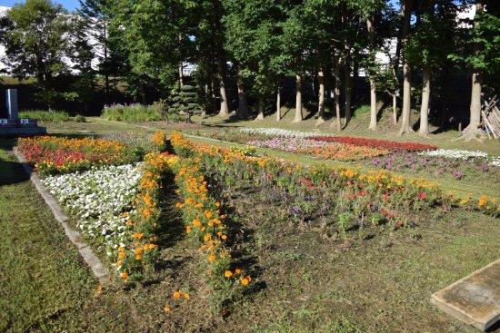 Rumoi, Japan: 花壇も綺麗に整備されていました。