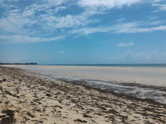 Gold Rock Beach Foto