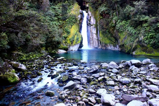 Fiordland National Park Picture