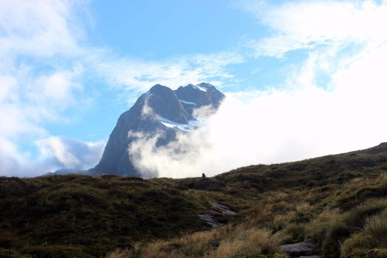 Fiordland National Park Foto