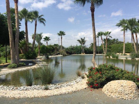 Finca el Lago : El lago
