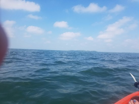 Kayak the Bay: Relaxing view of all that water!!