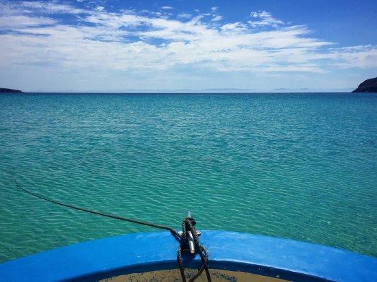 Isla Espiritu Santo: photo1.jpg