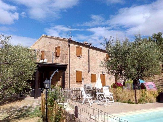Montalto delle Marche, Italia: casolari in pietra, ottima ristrutturazione. piscina piccola ma tenuta come un gioiello