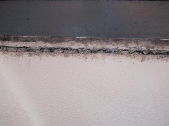 Rochelle Park, Νιού Τζέρσεϊ: Mold on windowsill