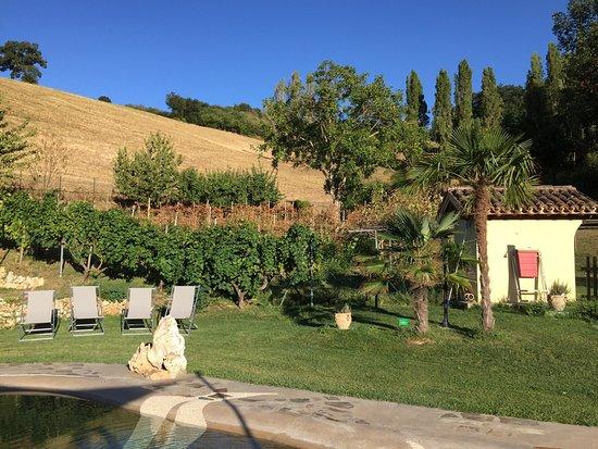 Colbordolo, Ιταλία: photo4.jpg