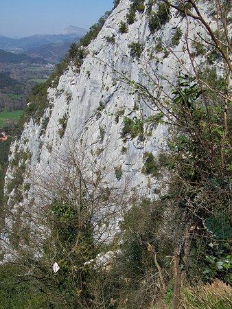 Cave of El Castillo: Cueva Covalanas