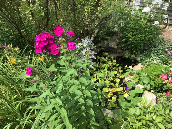 York, ME: gardens make our summer complete