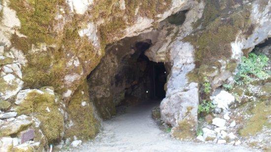写真Oregon Caves National Monument枚