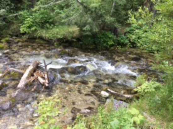 Anaconda, Montana: La riviere 