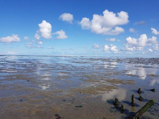 Pieterburen, Holland: Wadlopen in September 2017