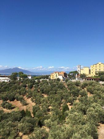 Hotel Dania: photo2.jpg