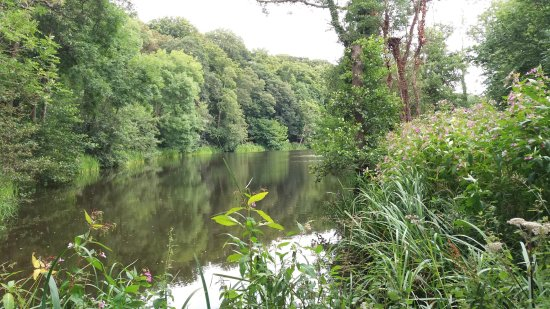 Renishaw, UK: more of the same lake