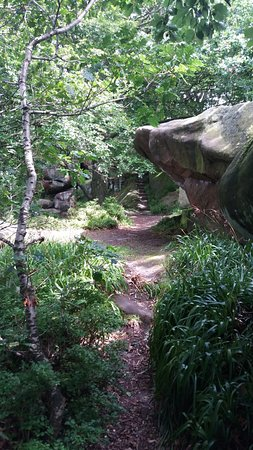 Birchover, UK: rowtor rocks