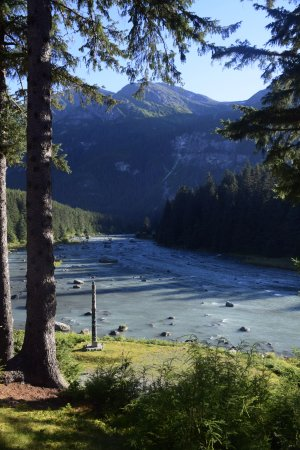 Chilkoot Haven: view from back porch