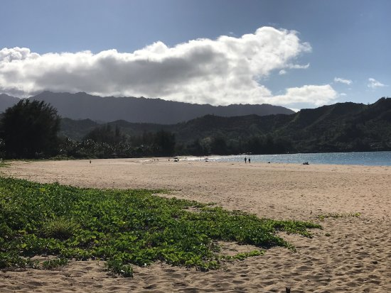 Hanalei Beach: photo0.jpg