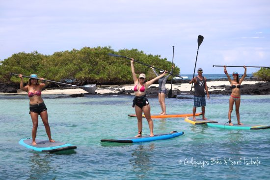 Puerto Villamil, Ecuador: Stand up Paddle board tours available, Isla Isabela