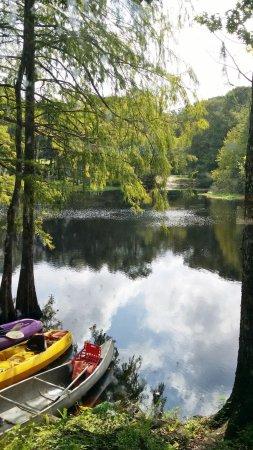 Nobleton, FL: FOTEDCC_large.jpg