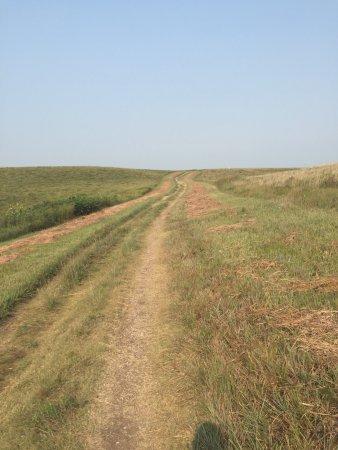 Konza Prairie Research Natural Area: photo1.jpg