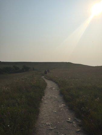 Konza Prairie Research Natural Area: photo3.jpg