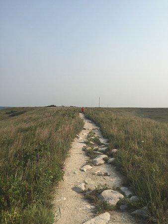 Konza Prairie Research Natural Area: photo4.jpg