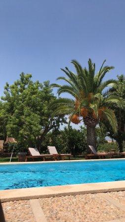 Binissalem, Spanyol: photo3.jpg