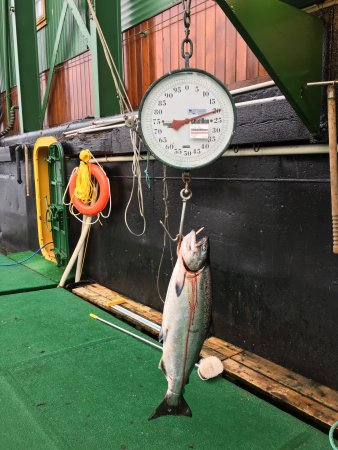 Langara Fishing Lodge: photo1.jpg