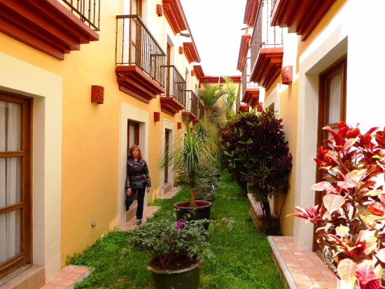 Hotel Casa Conzatti-bild