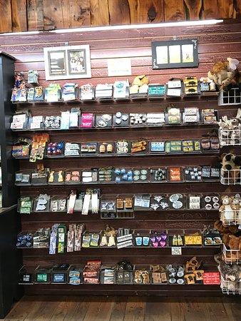 Wall Drug: More browsing