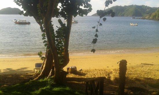 Speyside, Tobago: image-0-02-05-ab13863a189134bdf525b53c1bbb9ac0db2c69503e94e2352b745124b88637a9-V_large.jpg