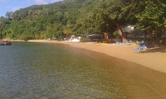 Speyside, Tobago: image-0-02-05-b7d7f955c6176116cce16d8499cf707cda21305498271166944c25ca7bb77430-V_large.jpg