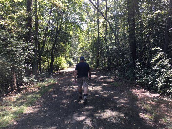 Elmer, NJ: Hiking in Parvin Park