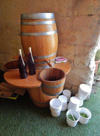 Saint-Julien-de-Chedon, Frankrig: Bouteille de jus de raisin pour les enfants