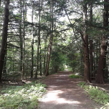 Canoe Meadows Wildlife Sanctuary: Easy Paths and Trails