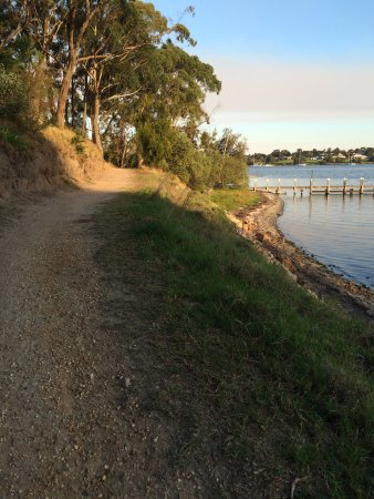Paynesville, Australia: Views along the track which follows the shoreline of Newlands Arm.