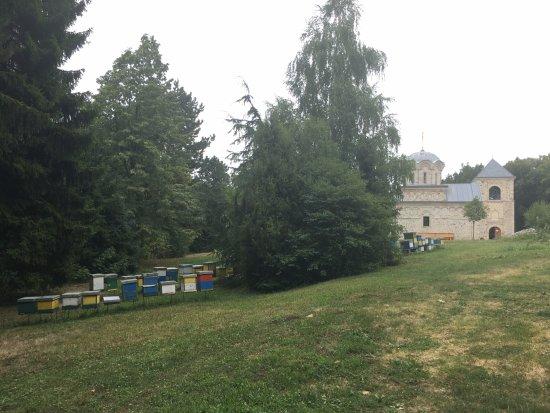 Staro Hopovo Monastery with beehives