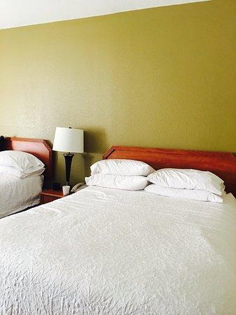波蒂奇希爾頓恒庭飯店照片