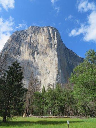 Yosemite Tours Tripadvisor