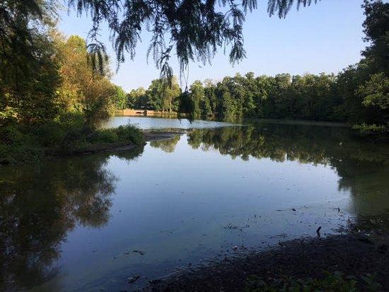 Greensboro, NC: View from boardwalk