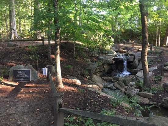 Greensboro, NC: Serenity Falls