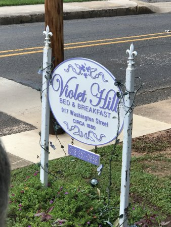 Violet Hill Bed and Breakfast: photo1.jpg