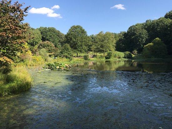 Meadowlark Botanical Garden: photo3.jpg