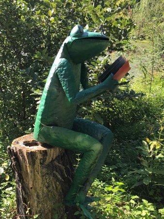 Meadowlark Botanical Garden: photo4.jpg