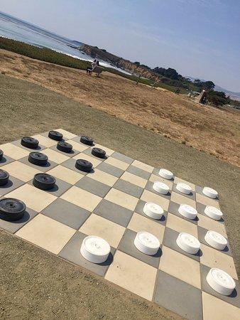 Cavalier Oceanfront Resort Picture